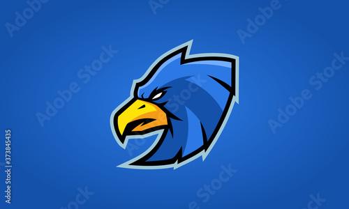 Foto Hawk Esports Logo Vector Templates