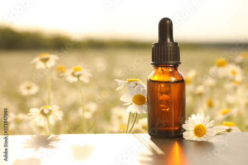 Photo Bottle of chamomile essential oil on table in field