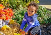 Outdoor Photo Of African-American Toddler With Yellow Gourd Looking At Camera