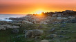 canvas print picture - Beautiful landscape of Cabo Polonio in Uruguay at sunset