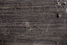 Texture Of Old Dark Cracked Wo...