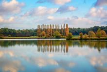 Trees And Clouds Reflections O...
