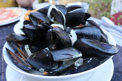 assiette de moules marinière, ville de Dax, département des Landes, France Canvas-taulu