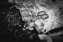Two Wedding Rings On A Autumn ...