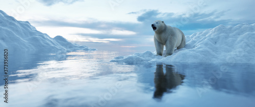 Fotografiet Polar bear on iceberg. Melting ice and global warming.