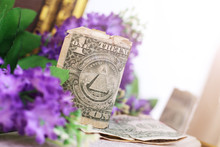 One Dollar Bill And Flowers, Sunlight Toned