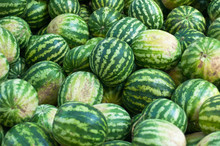 Water Melons On Sale In Istanbul, Turkey.