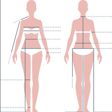 Female Body For Measuring The ...