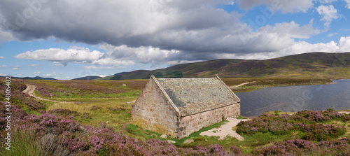 Fotografiet panoramic view of a boathouse by the side of a lake, purple heather at the first