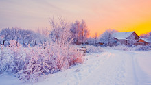 Rurral Winter Landscape With Snow At Sunset