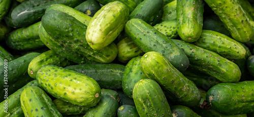 Fototapeta Panorama Gurken auf dem Markt obraz