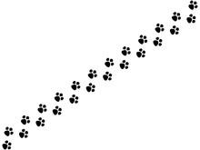 犬の足跡 1
