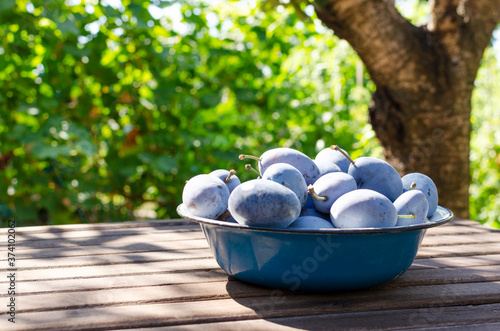 Fototapeta Bowl full of ripe and juicy pulms on the wooden table