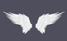 Template Of Feathers Angel Or ...