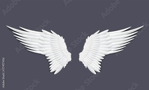 Photo Template of feathers angel or bird wings realistic vector illustration isolated