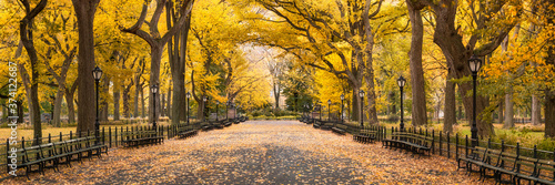 Foto Central Park in autumn, New York City, USA