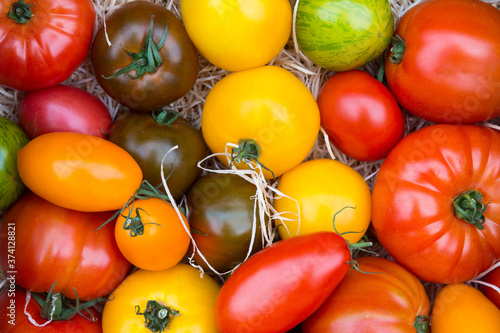 Variety of colorful fresh ripe tomatoes on display at a market stall Fototapeta