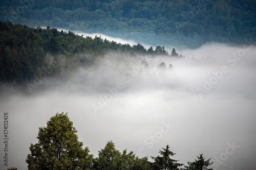 Fototapeta Tief hängende Wolken über einem Mischwald, Herbstwetter und Nebel
