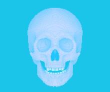 Pixelated Or Blocky Skull On B...