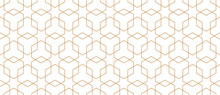Vector Seamless Geometric Pattern. Modern Thin Hexagon Grid Texture.
