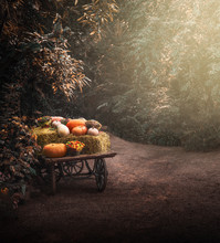 Festive Autumn Wooden Cart Wit...
