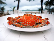 Steamed Blue Swimming Crab On White Wooden Table Near Beach