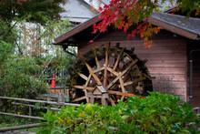 日本の原風景のイメージ写真|紅葉と古い水車 秋のイメージ