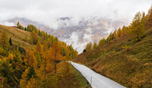 A Road Through The Mountains After The Rain In Autumn