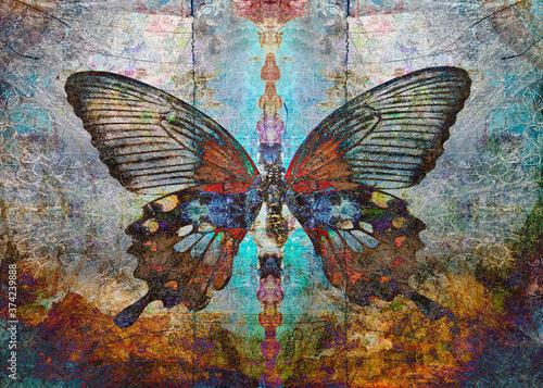 Fotografie, Obraz Magic Shaman butterfly