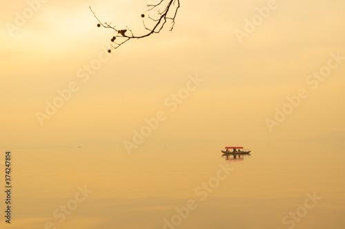 Hubei Wuhan East Lake Scenic Area Late Autumn  Scenery - fototapety na wymiar