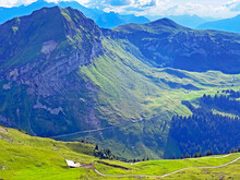 Alpine Meadows And Pastures On...