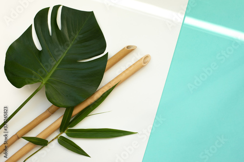 Bamboo trunks and lieaves on azure background Canvas Print