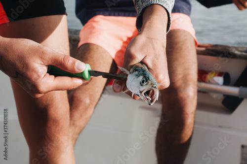 Fotografie, Obraz Closeup focus shot of people with a caught mackerel fish