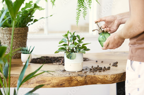 Man gardeners watering plant in marble ceramic pots on the white wooden table Fotobehang
