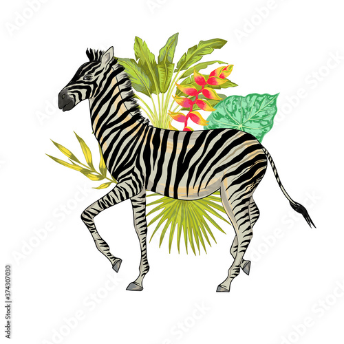 Foto Vector with watercolor effect cute realistic illustration of zebra with tropical