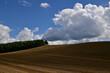 8月美瑛の夏雲のある風景
