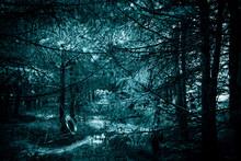Mystical Horror Scary Garret B...