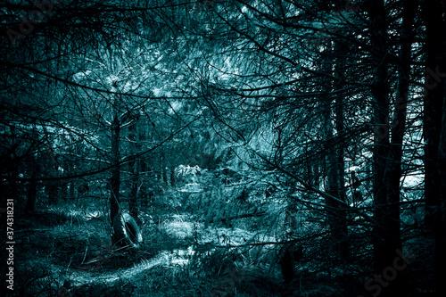 Stampa su Tela Mystical horror scary garret background to halloween