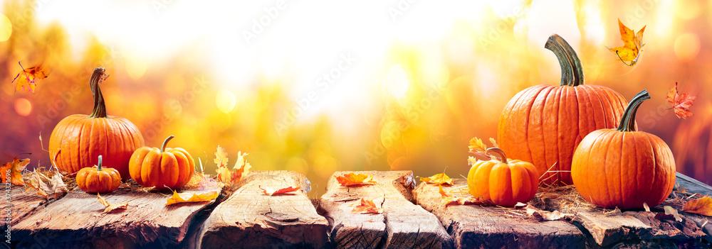 Fototapeta Pumpkins On Aged Plank At Sunset - Autumn And Harvest Table