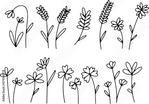 Foto Hand made doodle flowers and plants