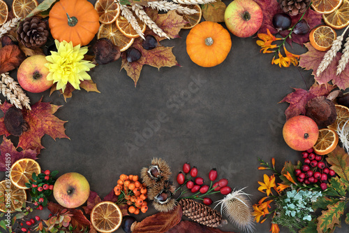 Photo Autumn nature study background border composition with food, flora and fauna on lokta background