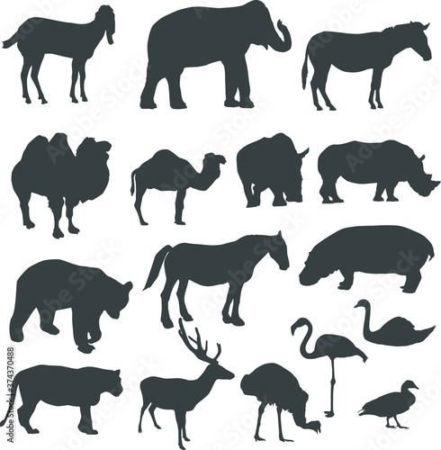 Set of animals silhouette, isolated on white, vector illustration Poster Mural XXL