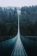 Panel Szklany Industrialny suspension bridge in the mountains