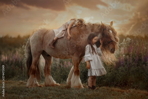Fotografie, Obraz Two little sisters on red tinker horse Gypsy cob in summer evening field