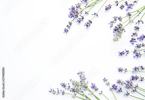 Lavender flowers on white background. Flowers flat lay, top view.