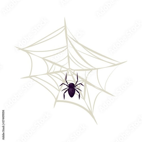 Fényképezés Spider vector isolated insect horror scary web animal fear danger spooky arachnid illustration