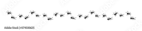 Photo Ants marching silhouette