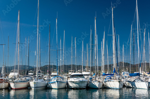 Valokuva row of sailboats moored in the Saint Tropez marina on a sunny day