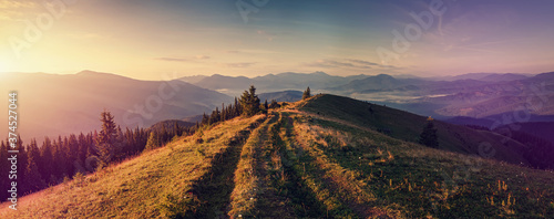 Obraz Scenic image of nature mountain landscape. stunning alpine valley with grassy, ground road during sunset. Mountain valley,  pine forest and silhouette of mountais at sunrise. Nature background photo - fototapety do salonu