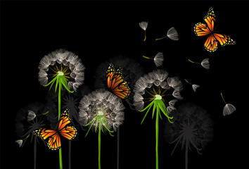 Panel Szklany Do sypialni Dandelions with butterflies. Vector illustration